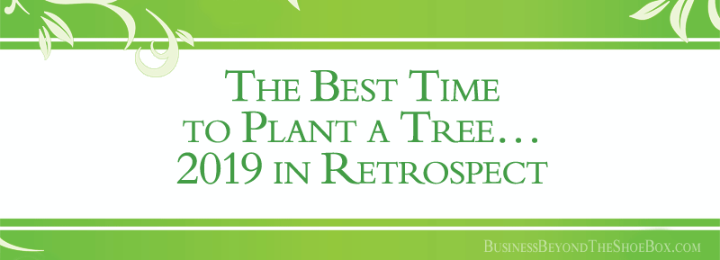 The Best Time to Plant a Tree… 2019 in Retrospect from a Business Consultant