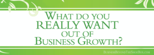 Read more about the article What do you REALLY WANT out of Business Growth?