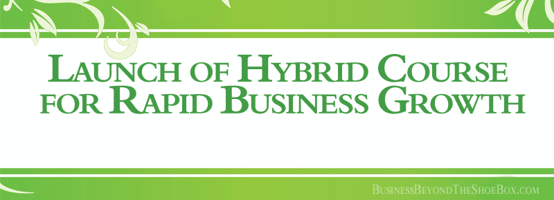 Read more about the article Launch of The 20 Minute CFO Hybrid Course for Rapid Business Growth